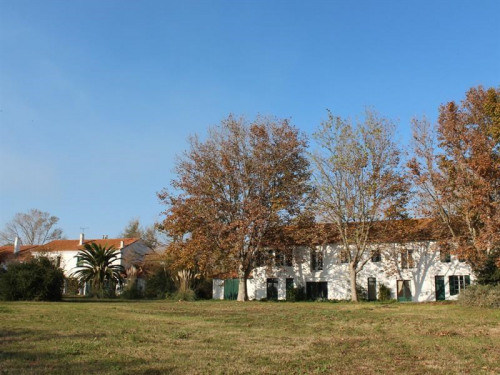 Vente - Ferme 50 pièces - 1300 m2 - Salin de Giraud - Photo