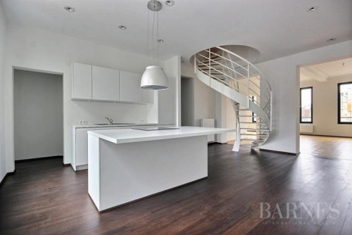 豪华住房 - 双层套间 5 间数 - 193 m2 - Petit Bruxelles - Photo