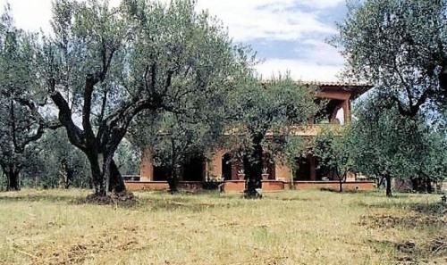 Venta  - villa 8 habitaciones - 340 m2 - Lago de Bolsena - Photo