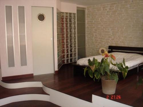 出售 - loft房 1 间数 - 99 m2 - Toulon - Chambre - Photo