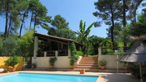 Deluxe sale - Property 4 rooms - 110 m2 - Saint Jean du Pin - Photo