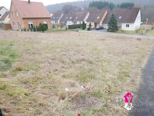 Revenda - Terreno - 662 m2 - Wimmenau - Photo