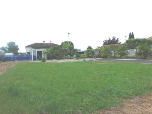 Sale - Site - 801 m2 - Marssac sur Tarn - Photo