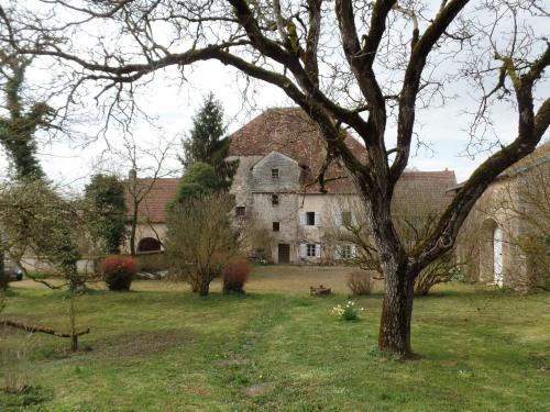 Vente - Château 10 pièces - 350 m2 - Venère - Photo