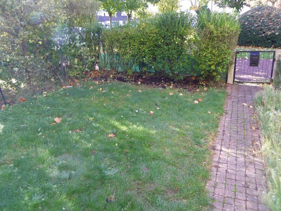 Location maison / villa Maurepas 1 175€ CC - Photo 8