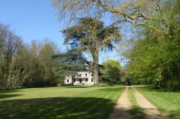 Deluxe sale chateau Angers 15 mn est 600000€ - Picture 1