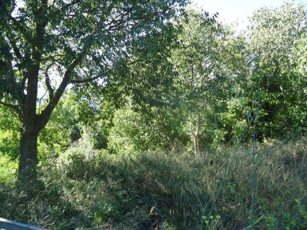 Vente terrain Reynes 120000€ - Photo 9
