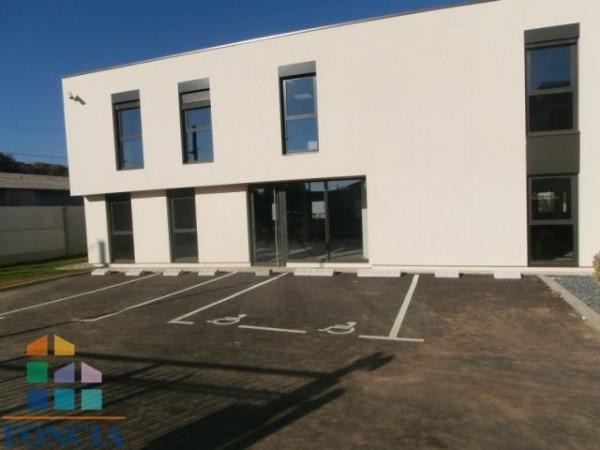 Location Local d'activités / Entrepôt Saint-Romain-en-Gal 0