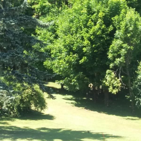 Venta  terreno Le bourget du lac 380000€ - Fotografía 4