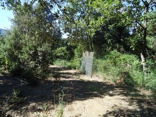 Vente terrain Reynes 120000€ - Photo 4