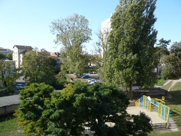 Rental apartment Pont de cheruy 595€ CC - Picture 2