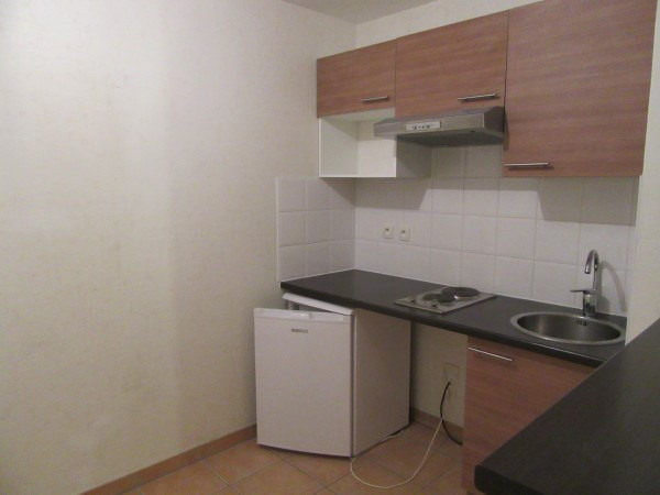 Location appartement La salvetat st gilles 480€ CC - Photo 1