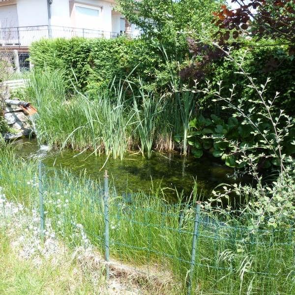 Vente maison / villa Niederschaeffolsheim 333999€ - Photo 5