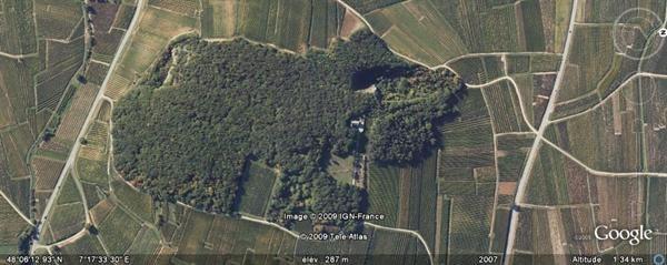 Vente maison / villa Colmar 660000€ - Photo 4