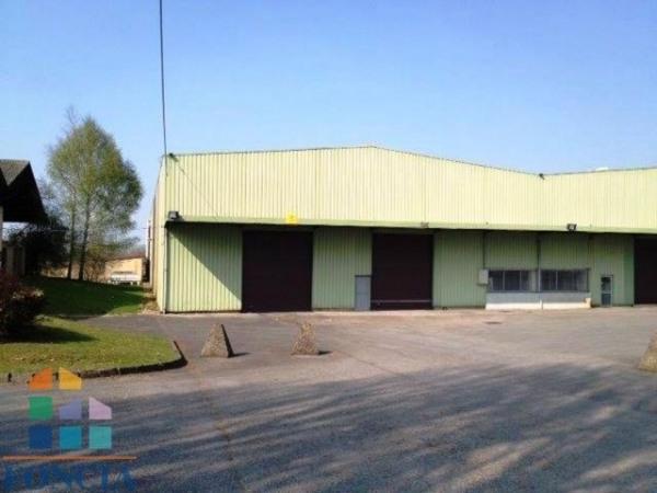 Location Local d'activités / Entrepôt Saint-Witz 0