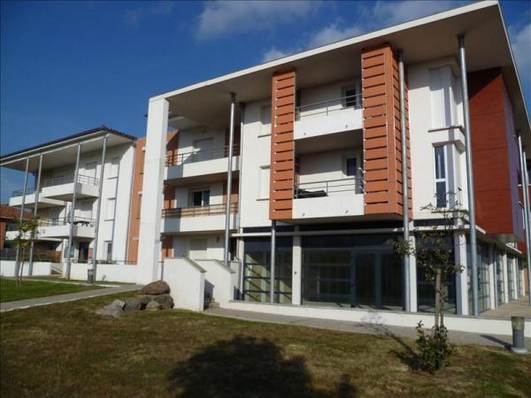 Location appartement Salvetat saint gilles 445€ CC - Photo 2