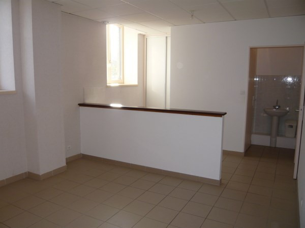 Rental apartment Annoisin chatelans 405€ CC - Picture 1