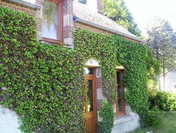 Vente maison / villa Mery es bois 82000€ - Photo 5