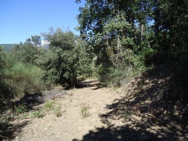 Vente terrain Reynes 120000€ - Photo 2