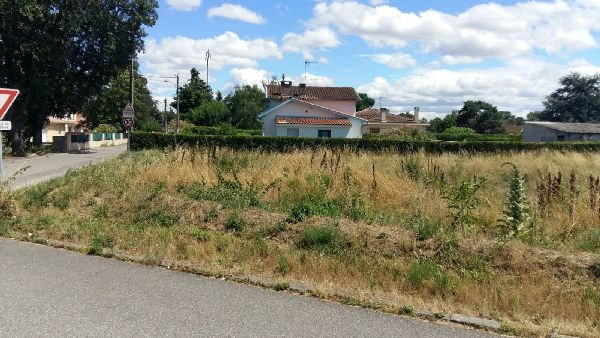 Vente terrain Roques 180 000€ - Photo 2