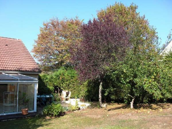 Location maison / villa Bosmie l aiguille 770€ CC - Photo 2