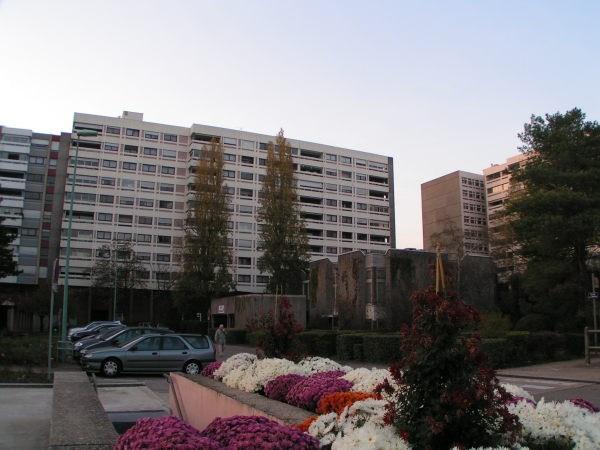 Location appartement Caluire 905€ CC - Photo 1