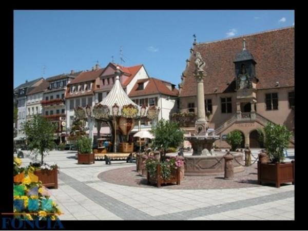 Vente Local commercial Molsheim 0