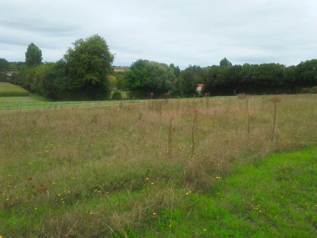 Vente terrain Courcelles 31 615€ - Photo 2