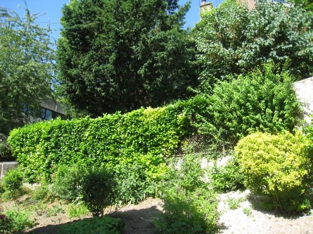 Vente de prestige maison / villa La celle saint cloud 695000€ - Photo 6
