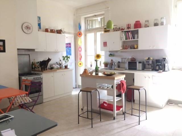 Rental apartment Avignon 704€ CC - Picture 1