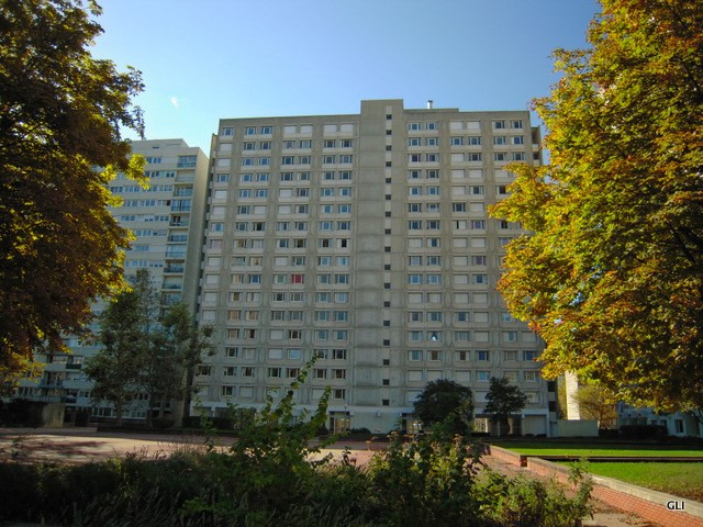 Rental apartment Villeurbanne 690€ CC - Picture 2