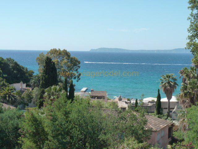 Vendita nell' vitalizio di vita appartamento Rayol-canadel-sur-mer 283000€ - Fotografia 5