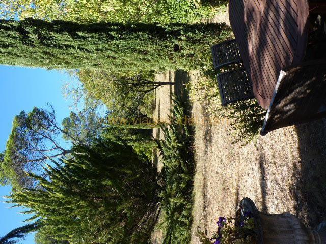 Life annuity house / villa Besse-sur-issole 400000€ - Picture 12