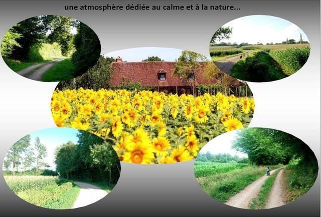Sale house / villa Louhans  10 minutes 249000€ - Picture 12