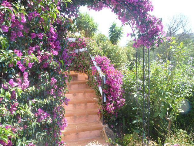 Lijfrente  huis Bormes-les-mimosas 170000€ - Foto 7