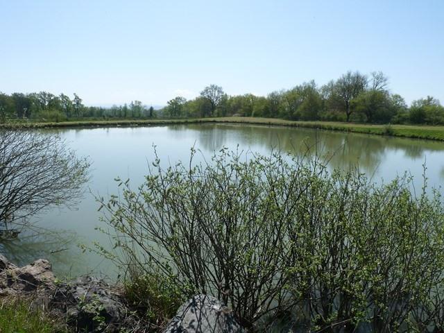 Verkoop  stukken grond Sury-le-comtal 39000€ - Foto 2