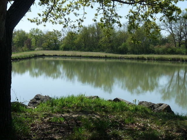 Verkoop  stukken grond Sury-le-comtal 39000€ - Foto 1