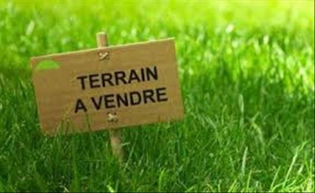 Vente terrain Vineuil 60 000€ - Photo 1