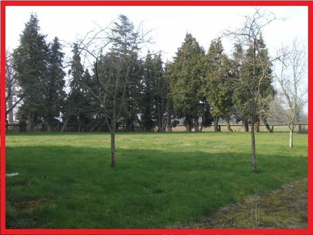 Vente maison / villa Falaise sud 10 mns 295000€ - Photo 3