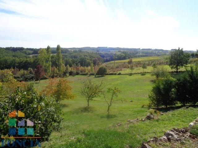 Deluxe sale house / villa Gageac-et-rouillac 299000€ - Picture 2