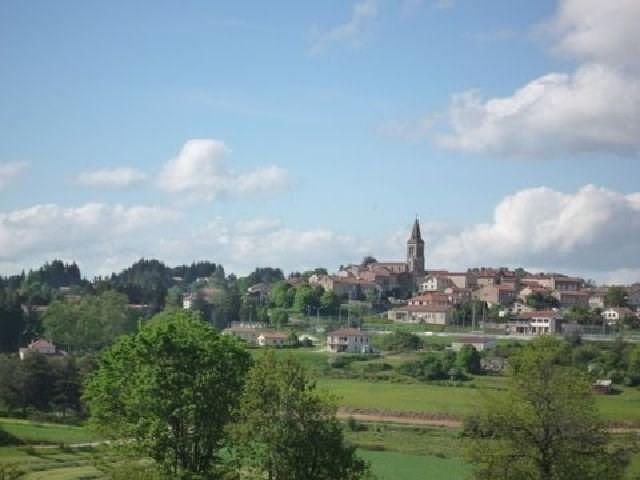Sale site Montfaucon en velay 29000€ - Picture 2