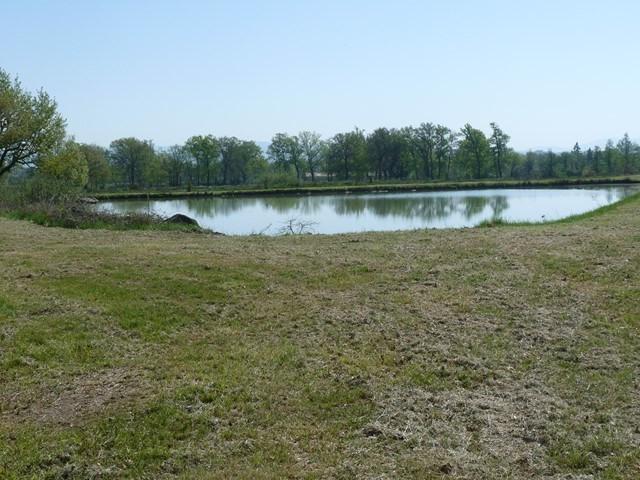 Verkoop  stukken grond Sury-le-comtal 39000€ - Foto 6