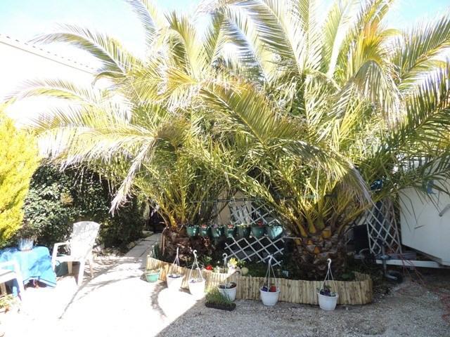 Vacation rental house / villa Vaux sur mer 390€ - Picture 4