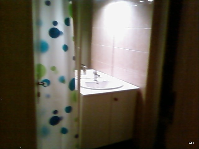 Rental apartment Ecully 385€ CC - Picture 3