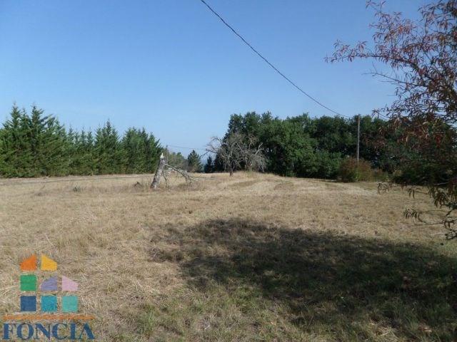 Venta  terreno Saussignac 39000€ - Fotografía 2