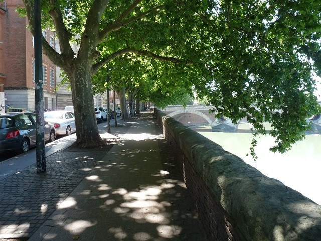 Sale apartment Toulouse 295 000€ - Picture 1