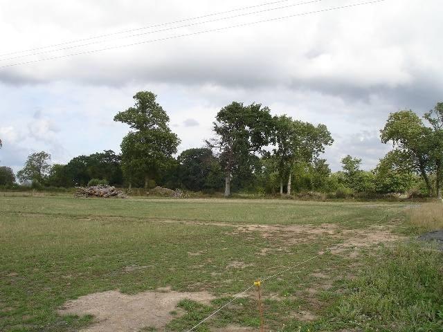 Verkoop  stukken grond Montmartin sur mer 73900€ - Foto 1