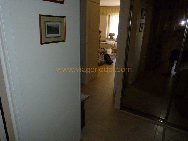 Vendita nell' vitalizio di vita appartamento Golfe-juan 35000€ - Fotografia 7