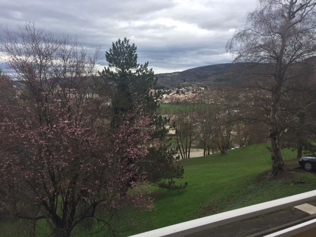 Location appartement Firminy 590€ CC - Photo 4