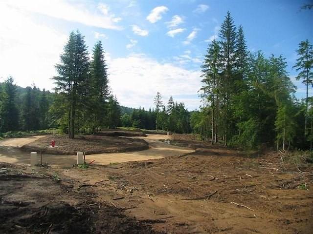 Vente terrain Le chambon sur lignon 74000€ - Photo 2